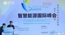 赵海翔:智能电网技术标准工作现状与思考